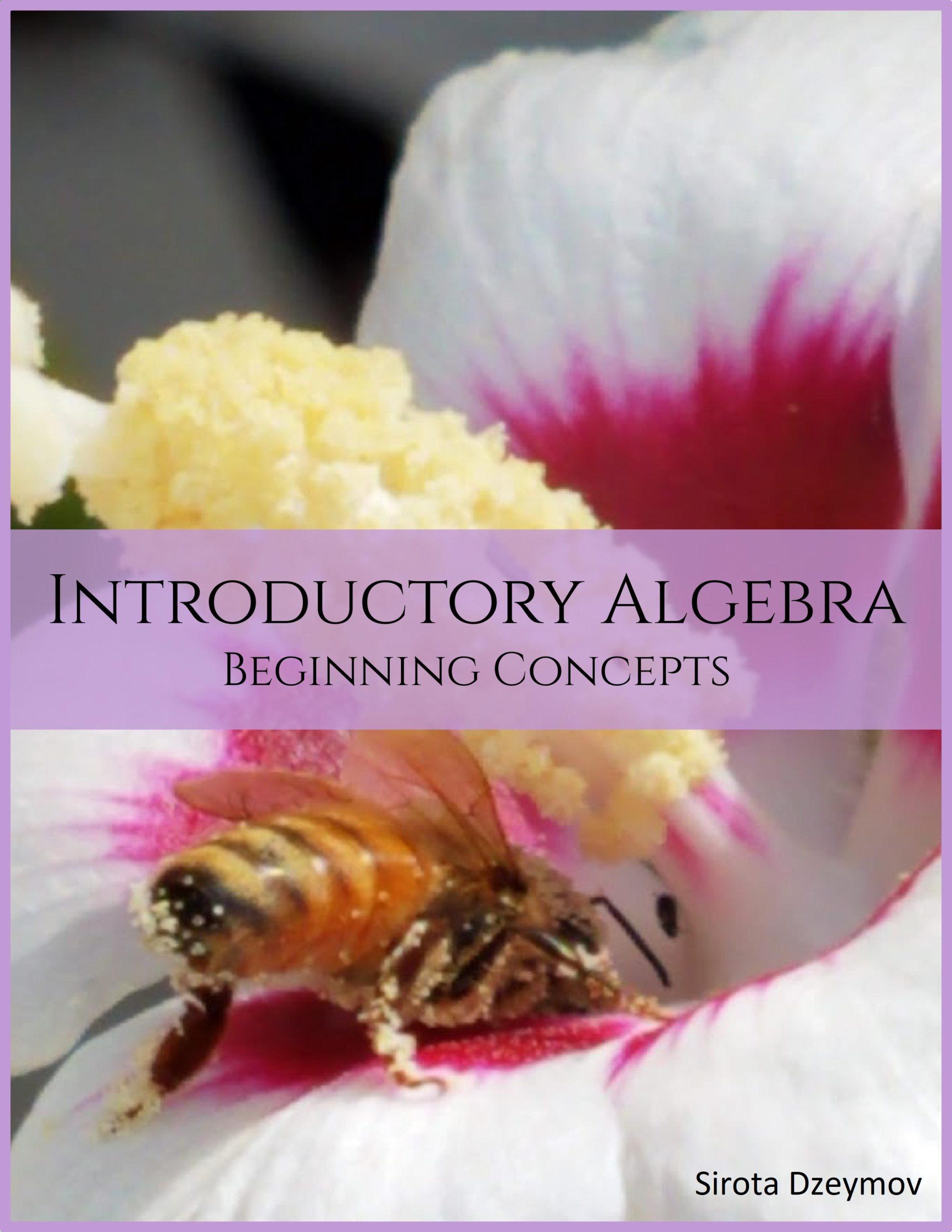 Introductory Algebra